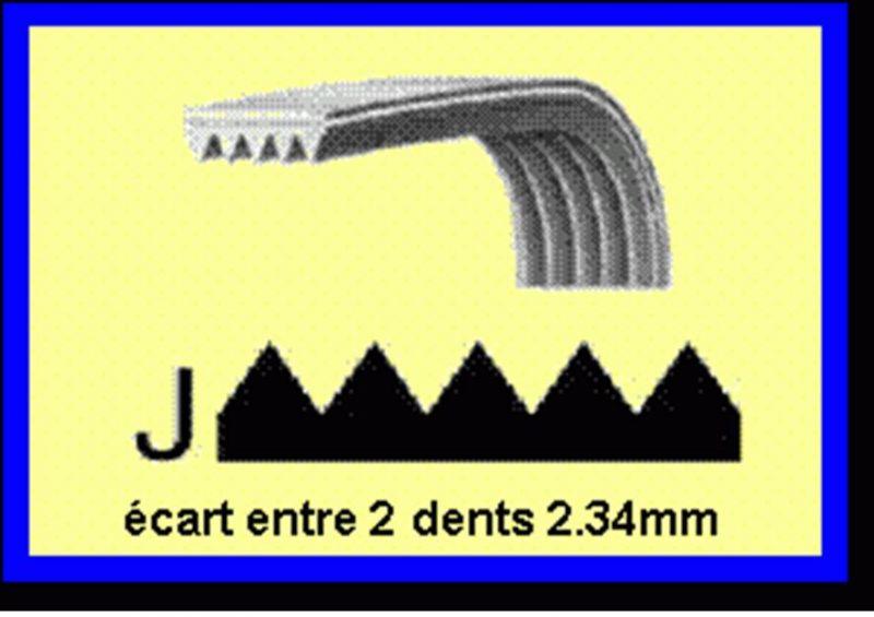 Courroie 1079J4 Image #2